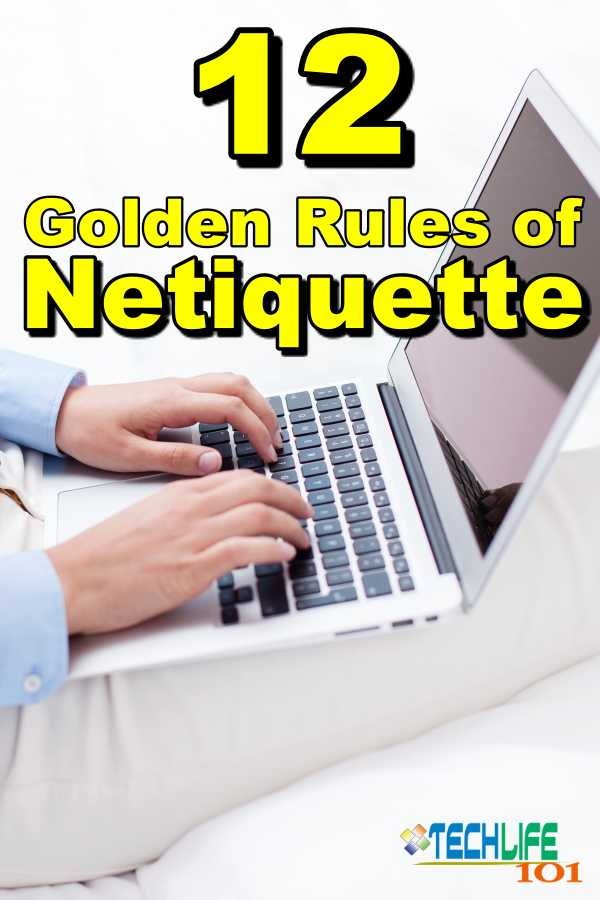 12 Golden Rules of Netiquette Pin